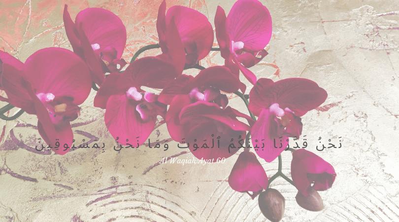 ayat tentang kematian dalam islam