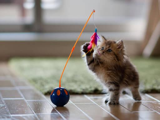Batasi Pergerakan Kucing