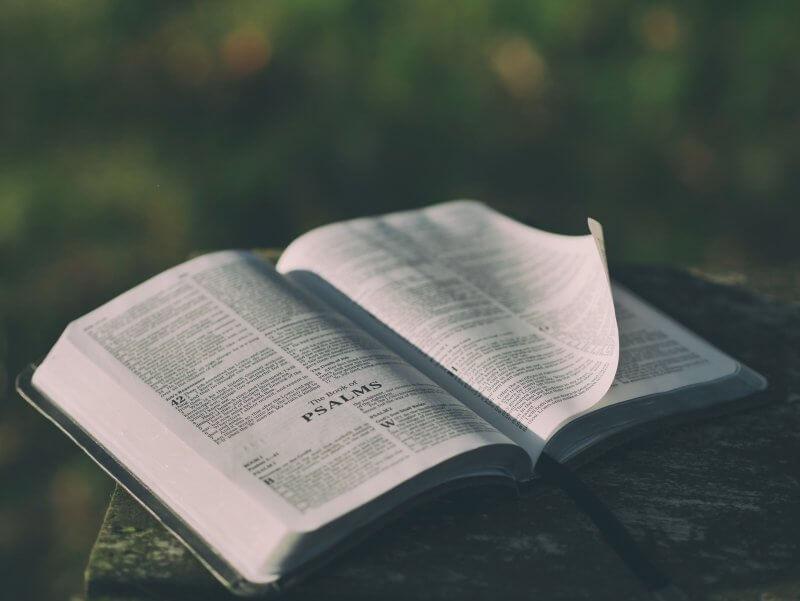 pengertian Kalimat Pasif