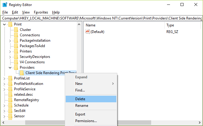 Right-click on Client Side Rendering Print Provider and select Delete